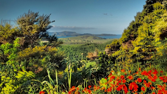 The TA offers stunning views across the beautiful Bay of Islands