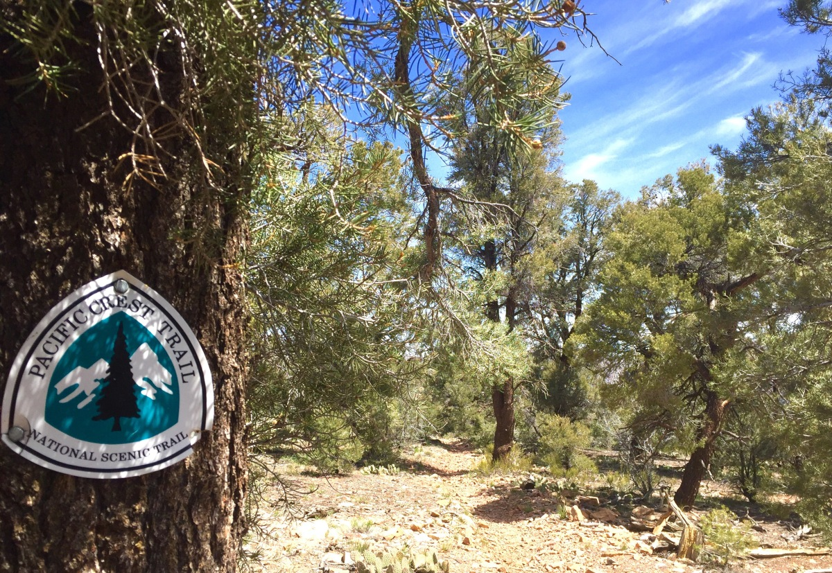 PCT Day 15 - Backtracking and Slackpacking
